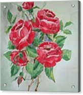 Red Morning Roses Acrylic Print