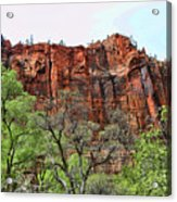 Red Mountains Zion National Park Usa Acrylic Print
