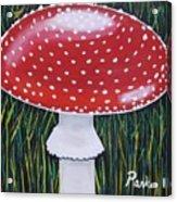 Red Mushroom Acrylic Print