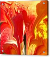 Red N Yellow Flowers 5 Acrylic Print