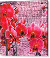 Red Orchids On Linen Zen Acrylic Print