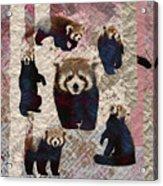 Red Panda Abstract Mixed Media Digital Art Collage Acrylic Print