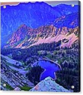 Red Pine Panorama Acrylic Print