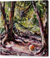 Red Pines Floater Acrylic Print