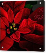 Red Poinsettia Happy Holidays Card Acrylic Print
