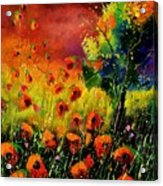 Red Poppies 451130 Acrylic Print