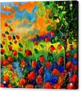 Red Poppies 45150 Acrylic Print