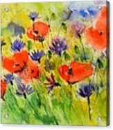 Red Poppies And Cornflowers Acrylic Print