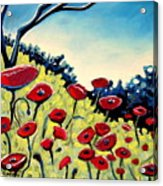 Red Poppies Under A Blue Sky Acrylic Print