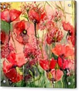 Red Poppies Wearing Pink Acrylic Print