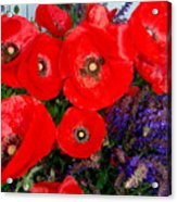 Red Poppy Cluster With Purple Lavender Acrylic Print