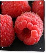 Red Raspberries Acrylic Print