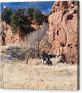 Red Rock Riders Acrylic Print