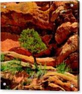 Red Rocks  Colorado Acrylic Print