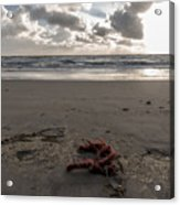 Red Rope On The Beach Acrylic Print