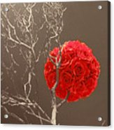 Red Rose Ball In Field Of Gray Acrylic Print