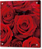 Red Rose Bouquet Acrylic Print by Kathy Yates