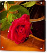 Red Rose Natural Acoustic Guitar Acrylic Print by M K  Miller