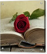 Red Rose On An Old Big Book Acrylic Print