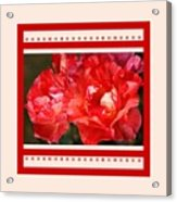 Red Rose With A Whisper Of Yellow And Design Acrylic Print