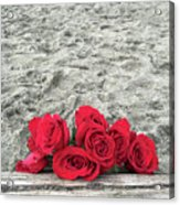 Red Roses Beachside Acrylic Print