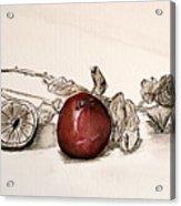 Red Sexy Plum. Acrylic Print