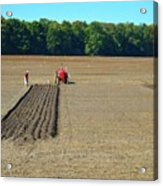 Red Shirt Red Tractor  Acrylic Print