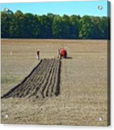 Red Shirt Red Tractor Two  Acrylic Print