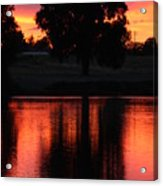 Red Sky Reflection With Tree Acrylic Print