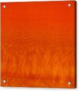 Red Stone 2 Acrylic Print