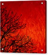Red Storm Acrylic Print