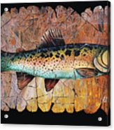 Red Trout Fresco Acrylic Print