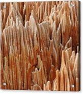 red Tsingy Madagascar 4 Acrylic Print