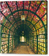 Red Tunnel Acrylic Print