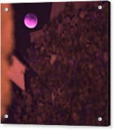 Red-violet Moon Acrylic Print