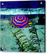 Red-white-blue Acrylic Print