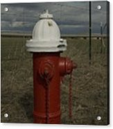 Red  White Hydrant Acrylic Print
