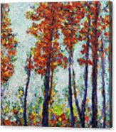 Red Woods Acrylic Print