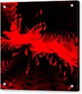 Red Zone Acrylic Print