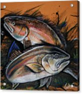 Redfish Frenzy Acrylic Print