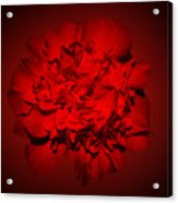Red,red Acrylic Print