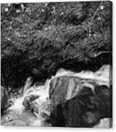 Redwood Rushing Stream 2  Acrylic Print