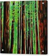 Redwoods Majestic 2 Acrylic Print