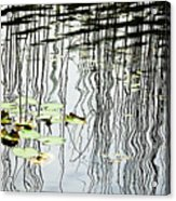 Reeds And Reflections Acrylic Print