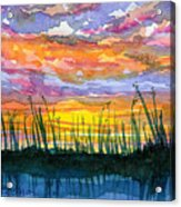 Reedy Sunset Acrylic Print