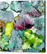 Reef 4 Acrylic Print
