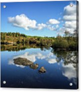 Reflect On This... Acrylic Print