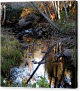 Reflect Upon Autumn Acrylic Print