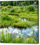 Reflected Clouds In Grass Acrylic Print