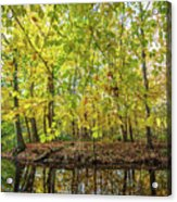 Reflected Color Of Autumn Acrylic Print